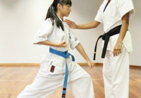 Knowing Your Karate Belts- Beginner's Colours