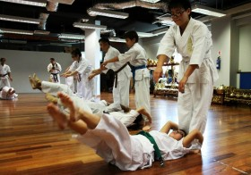 A Pursuit of Martial Art in Singapore: Shinkyokushin Karate