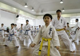 All About Shinkyokushin Karate Belts Grading