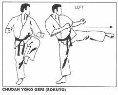 chudan_yoko_geri